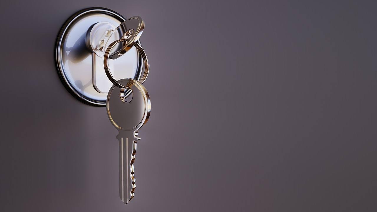 Frugtbar løsning med bestemt låsesmed
