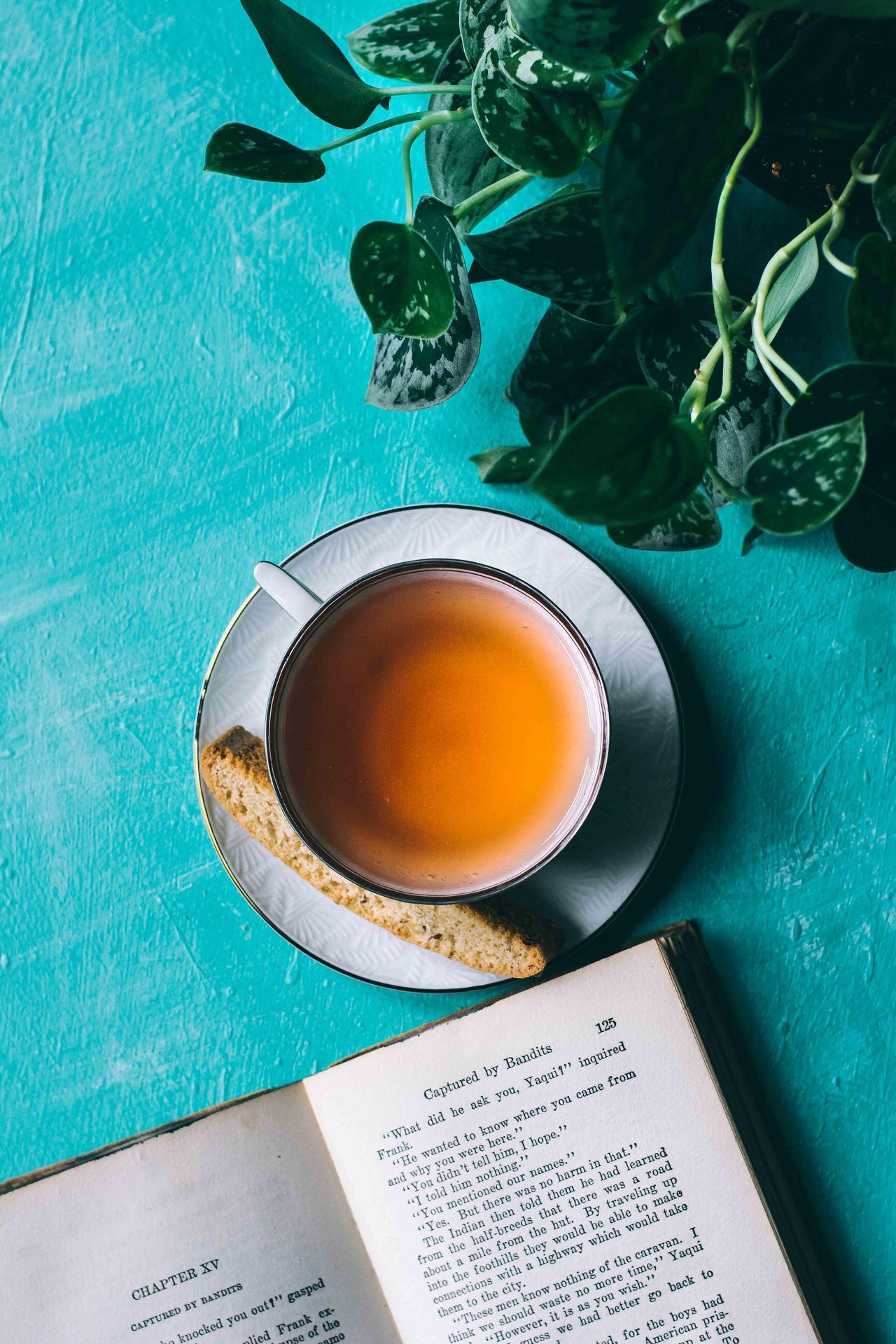 Skandinaviens største udvalg af vidunderlig te
